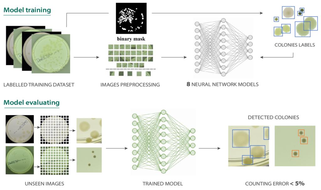 4.neural network